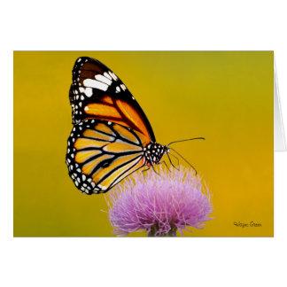 Mariposa de monarca que explora un cardo púrpura tarjeta de felicitación