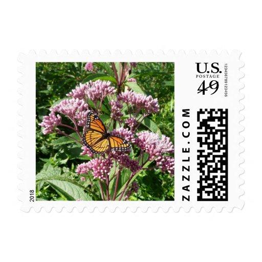 Mariposa de monarca sellos