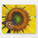 Mariposa de monarca soleada Mousepad Tapete De Ratones