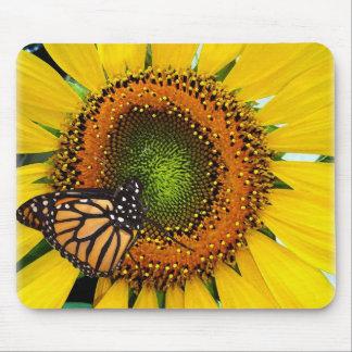 Mariposa de monarca soleada Mousepad