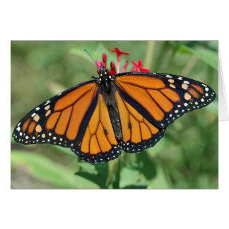 Mariposa de monarca tarjeta de felicitación