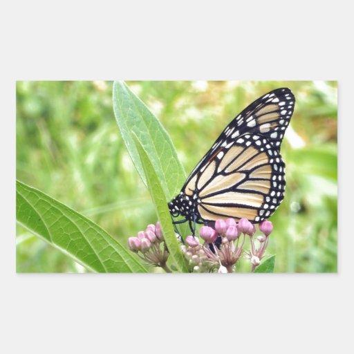 Mariposa de monarca y flores salvajes rosadas pegatina rectangular