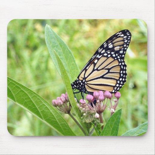 Mariposa de monarca y flores salvajes rosadas mousepad
