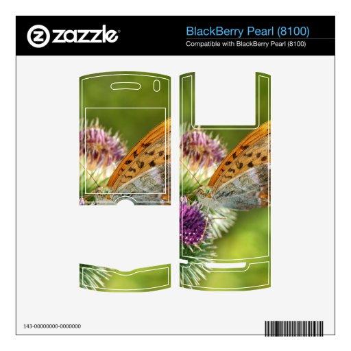Mariposa de Paphia del Argynnis en la flor de Card BlackBerry Calcomanía