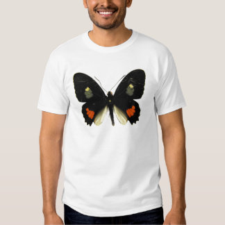 Mariposa de Parides Swallowtail Polera