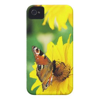 Mariposa de pavo real - caja de Blackberry Funda Para iPhone 4