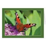 Mariposa de pavo real en tarjeta de felicitación d