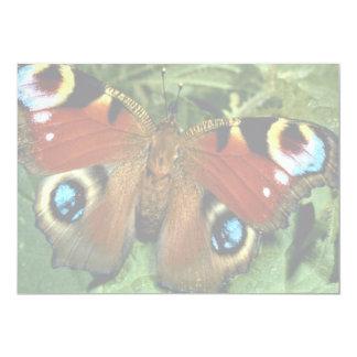 """Mariposa de pavo real invitación 5"""" x 7"""""""