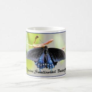 Mariposa de Pipevine Swallowtail Taza De Café