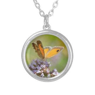 Mariposa de Pyronia en la flor Grimpolas Personalizadas