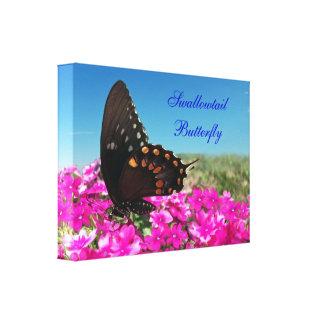 Mariposa de Spicebush Swallowtail Lienzo Envuelto Para Galerías