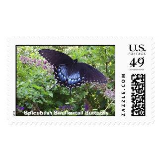 Mariposa de Spicebush Swallowtail Sello