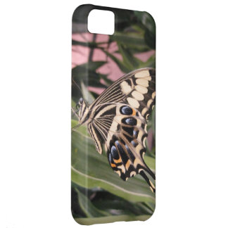 Mariposa de Swallowtail Carcasa Para iPhone 5C