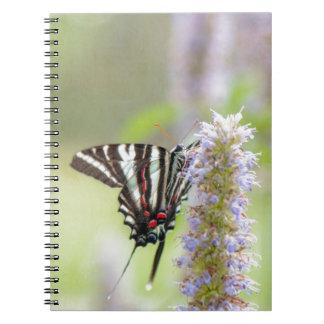 Mariposa de Swallowtail de la cebra Libretas Espirales