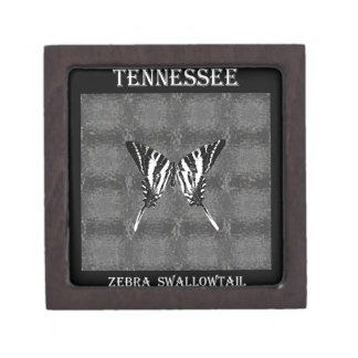Mariposa de Swallowtail de la cebra de Tennessee Cajas De Regalo De Calidad