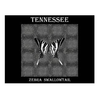 Mariposa de Swallowtail de la cebra de Tennessee Postal