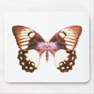 Mariposa de Swallowtail de la huerta Alfombrillas De Ratón