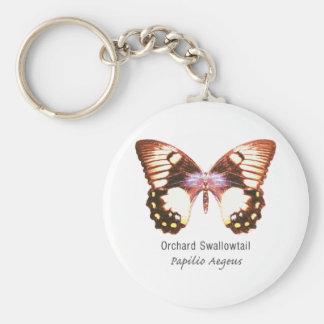 Mariposa de Swallowtail de la huerta con nombre Llavero Personalizado