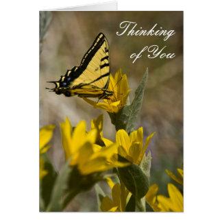 Mariposa de Swallowtail del tigre en el oído de la Tarjeta Pequeña