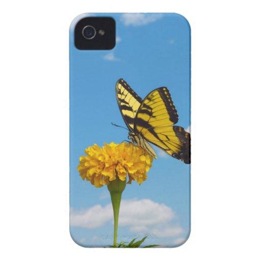 Mariposa de Swallowtail del tigre en una flor Case-Mate iPhone 4 Protector