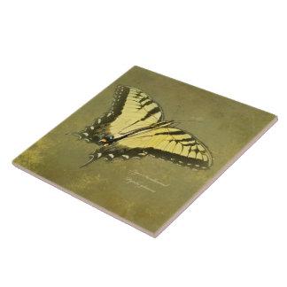 Mariposa de Swallowtail del tigre - glaucus de Pap Azulejo Cuadrado Grande