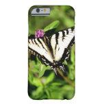 Mariposa de Swallowtail del tigre. Papilio glacus. Funda Barely There iPhone 6