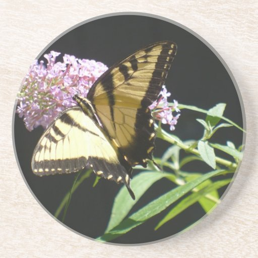 Mariposa de Swallowtail del tigre Posavasos Manualidades