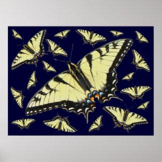 Mariposa de Swallowtail del tigre Póster