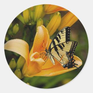 Mariposa de Swallowtail del Viejo Mundo Pegatina Redonda
