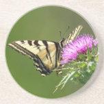 Mariposa de Swallowtail en cardo púrpura Posavaso Para Bebida