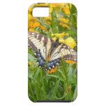 Mariposa de Swallowtail en los Wallflowers siberia iPhone 5 Cárcasa