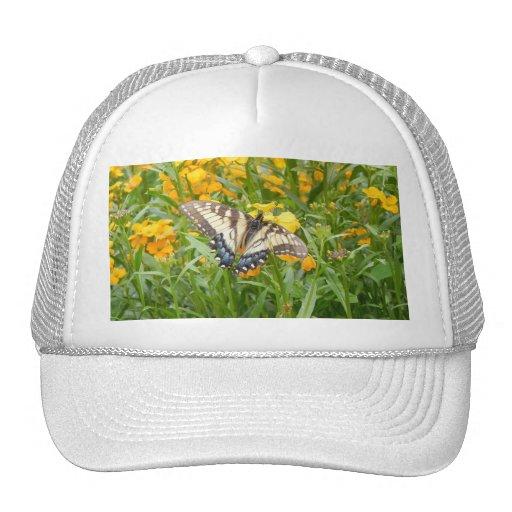 Mariposa de Swallowtail en los Wallflowers siberia Gorros Bordados