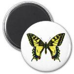 Mariposa de Swallowtail Imán De Frigorifico