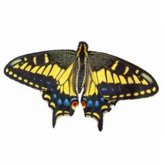 Mariposa de Swallowtail - Pin Escultura Fotográfica
