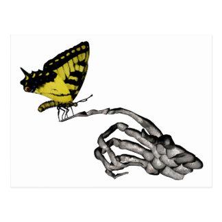 Mariposa de Swallowtail Postales
