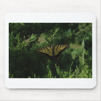 Mariposa de Swallowtail Alfombrilla De Ratones