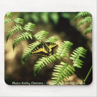 Mariposa de Swallowtail Alfombrillas De Ratón