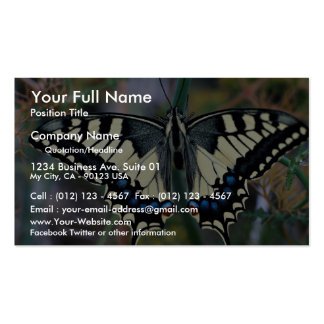 Mariposa de Swallowtail Tarjetas De Visita