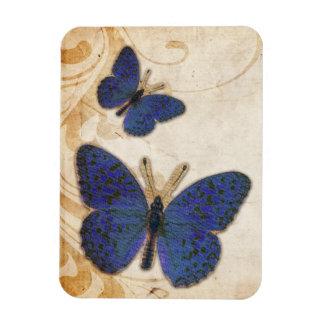 Mariposa del azul del vintage imán
