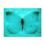 Mariposa del azul del vintage impresión en lona