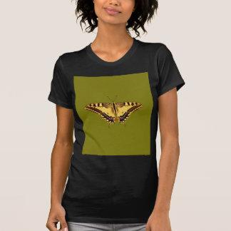 Mariposa del baile camisas