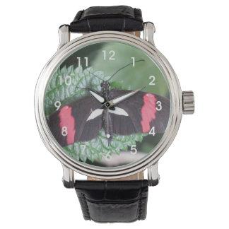 Mariposa del cartero relojes de pulsera