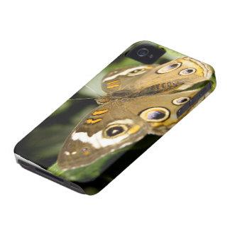 Mariposa del castaño de Indias Funda Para iPhone 4 De Case-Mate