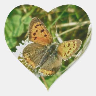 Mariposa del cobre americano calcomanía de corazón personalizadas