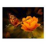 Mariposa del cuento de hadas postal