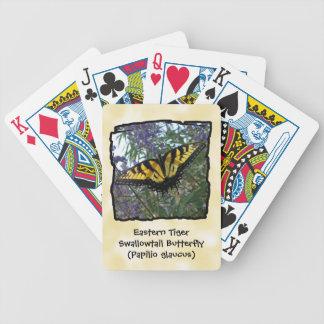 Mariposa del este de Swallowtail del tigre Baraja