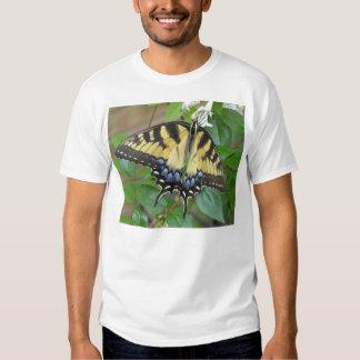 Mariposa del este de Swallowtail del tigre Poleras