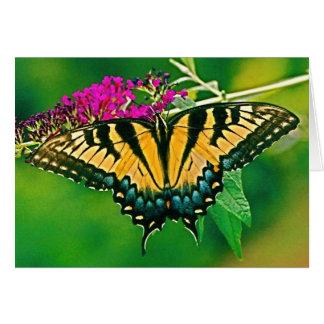 Mariposa del este de Swallowtail del tigre Felicitaciones