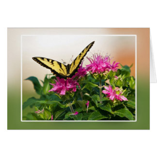 Mariposa del este de Swallowtail del tigre Tarjeta Pequeña