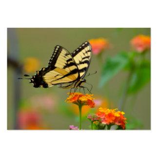 Mariposa del este de Swallowtail del tigre Tarjetas De Visita Grandes
